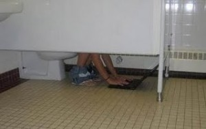 On the Potty with Laptop